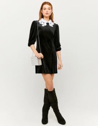 Velvet Contrast Collar Dress